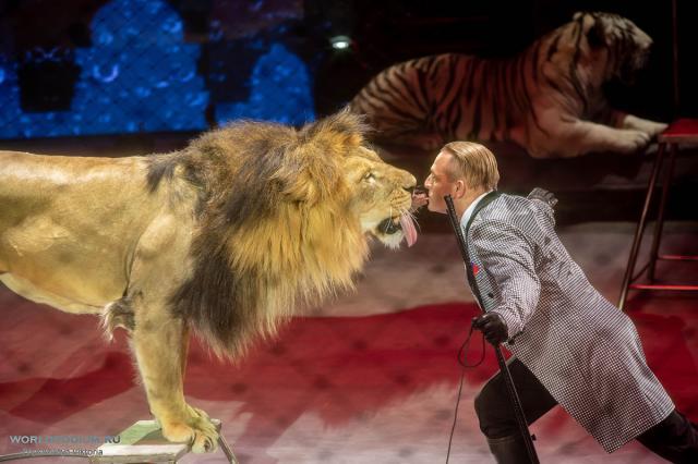 Путешествие в «ЭпиЦентр мира» на лайнере «Большой Московский цирк»  - идеальное возвращение к привычному ритму жизни!