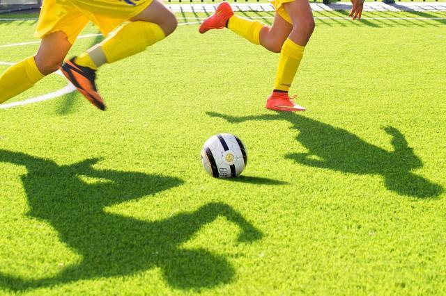 Выставка об  истории отечественного футбола откроется на ВДНХ к чемпионату мира — 2018