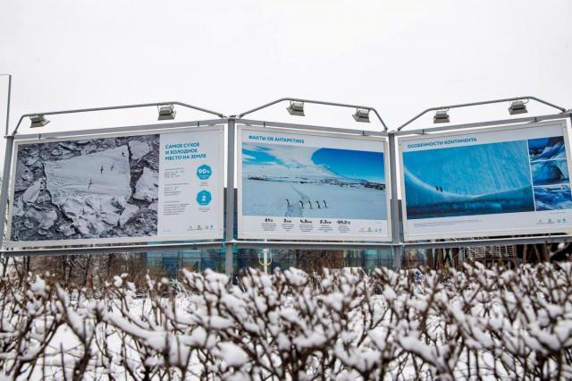 Путешествие на Южный полюс: откройте Антарктиду вместе с ВДНХ