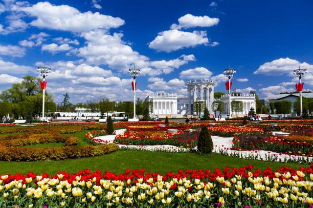 Цветочный рекорд ВДНХ: более миллиона цветов распустилось юбилейным летом на Выставке