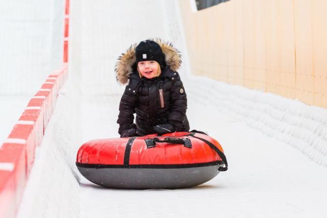 Зима на ВДНХ: что ждет гостей Главной выставки страны
