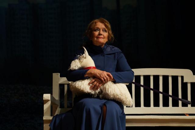 Бенефисный спектакль Ирины Алфёровой «Ещё не вечер»: многогранная актриса и потрясающая женщина отмечает юбилей!