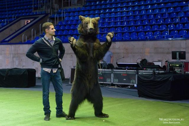 Медведь - олицетворение России и символ её силы: интервью с дрессировщиком, артистом цирка Олегом Александровым в День России
