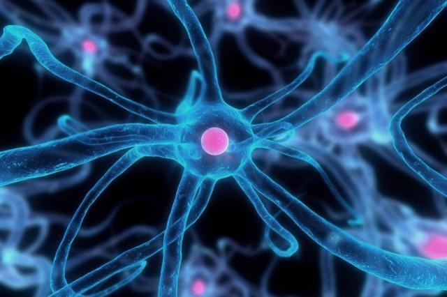 Ученые нашли предотвращающее метастазы вещество