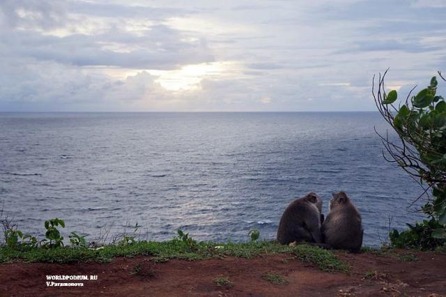 Бали - райский остров!