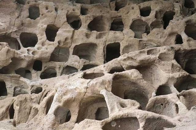 Древние люди чаще страдали аномалиями развития из-за кровосмешения