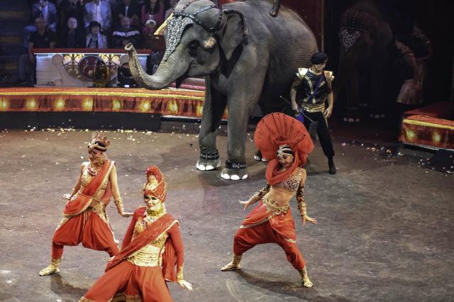 100-летний юбилей отечественного государственного цирка отметили грандиозным шоу в Цирке на Цветном бульваре!