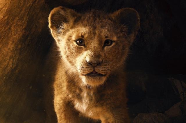 Чем удивит зрителя новый «Король Лев»