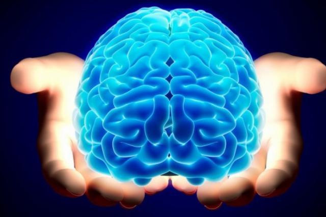 Ученые: мозг человека пытается переключить внимание четыре раза в секунду