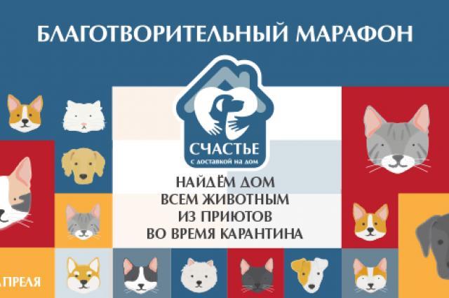 Онлайн-марафон по пристройству животных «Счастье с доставкой на дом»