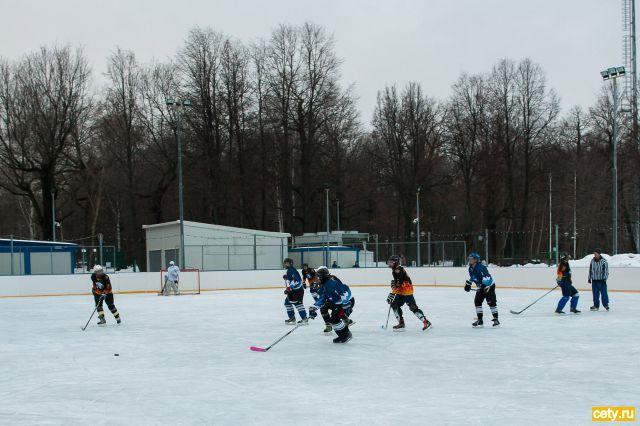 Гости ВДНХ могут бесплатно покататься на коньках в парке «Останкино»