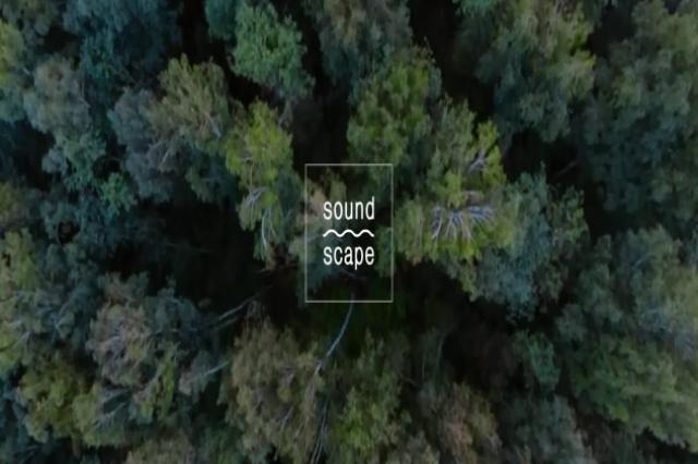 8-10 июля в Никола-Ленивце пройдёт фестиваль объемного звука Soundscape