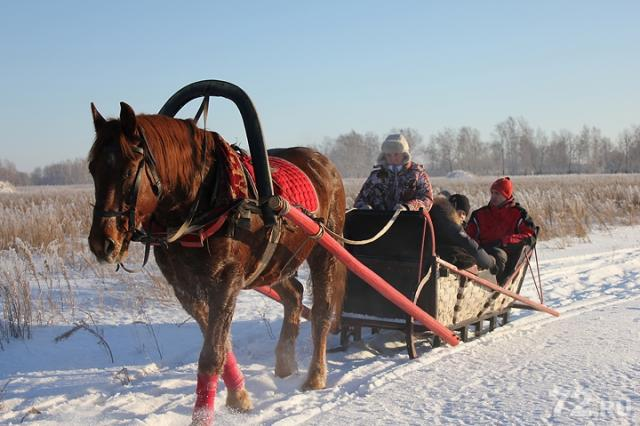 В белорусских Дудутках пройдет празднование Рождества