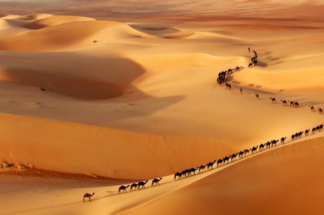 Средний палец из аравийской пустыни нарушил представления об истории человечества