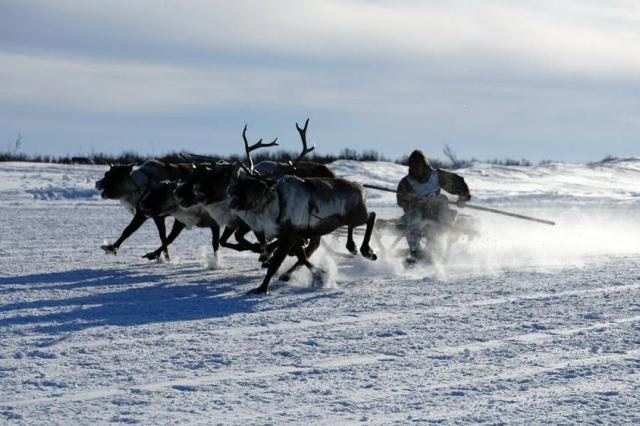 Телеканал «ЗВЕЗДА» первый покажет уникальный документальный фильм Леонида Круглова - «Великий северный путь»