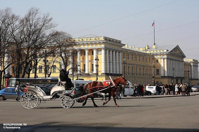 Мраморный дворец Русского музея войдет в деловую площадку Петербургского культурного форума