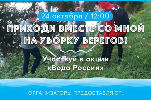 Памятник природы «Комаровский берег» в Санкт-Петербурге очистят от мусора