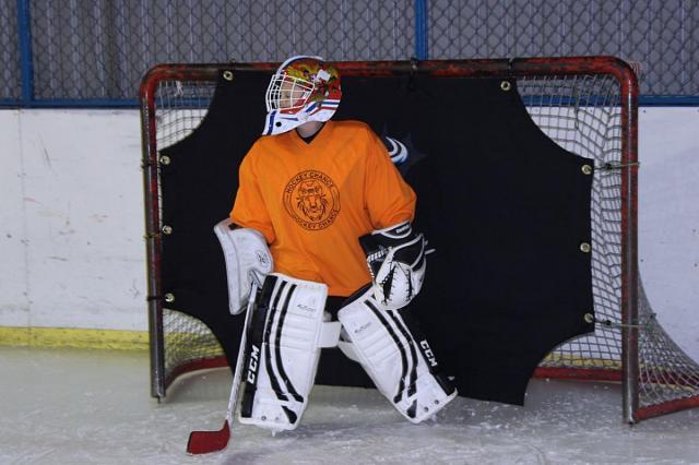 «Матч ТВ» покажет игры Шведских хоккейных игр
