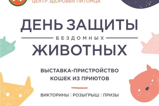 Выставка-пристройство бездомных животных пройдет 15-ого августа