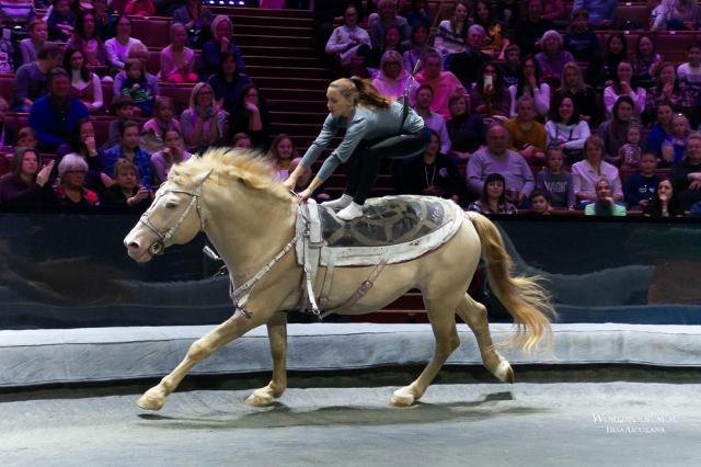 Сборная России по конному спорту на Олимпиаде-2021 в Токио