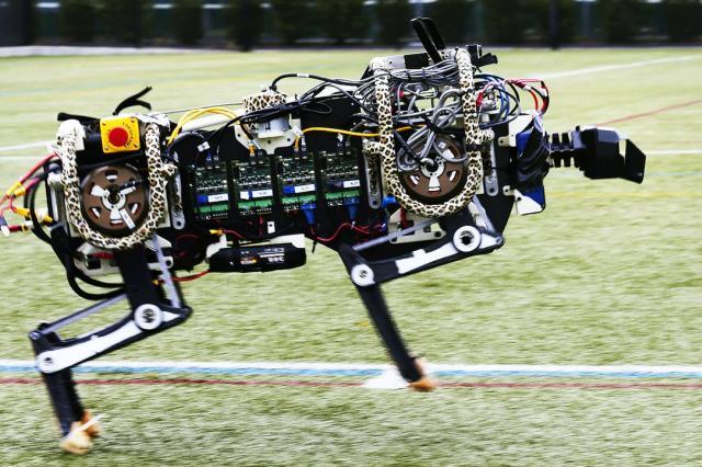 Инженеры показали слепого робота-гепарда