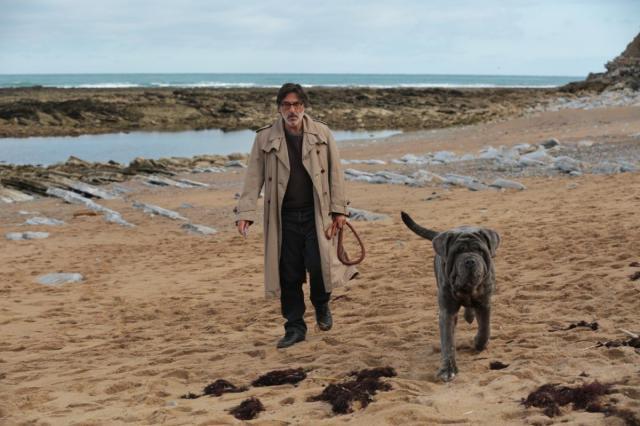 Зрители фильма «Моя собака Идиот» помогут бездомным животным