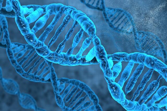 Популярный метод редактирования ДНК оказался смертельно опасным