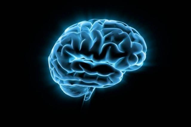 """Учёные обнаружили """"центр пессимизма"""" в головном мозге человека"""