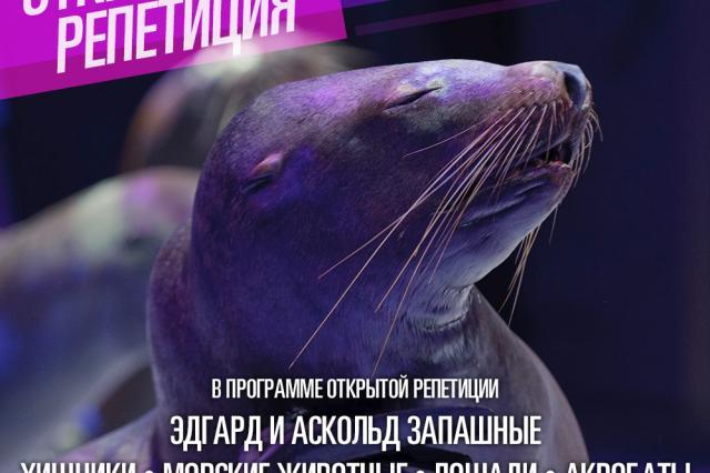 В Большом Московском цирке пройдёт первая открытая репетиция.