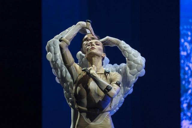 Диана Вишнева представит «Сны спящей красавицы» в Москве