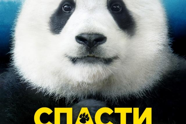 Как научиться говорить с животными и разыскать пропавшую панду – в новой семейной комедии «Спасти панду»