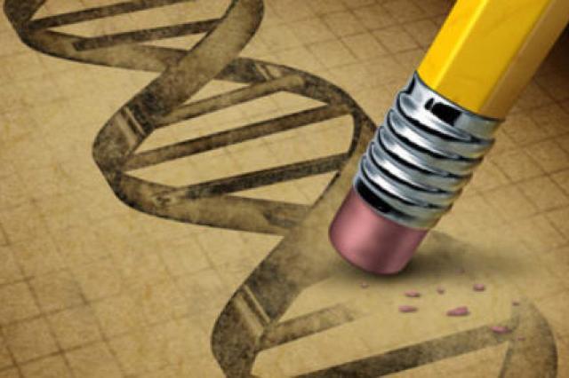 Защиту от вирусов людям дали неандертальцы