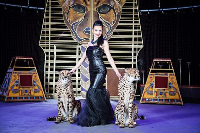 Гепарды поселятся в самом центре Москвы