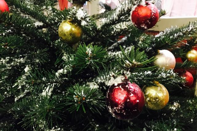 Московский зоопарк принимает новогодние елки до 15 января!