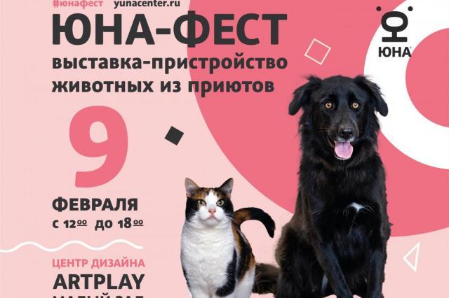 Центр реабилитации временно бездомных животных «Юна» проведет выставку-пристройство собак и кошек из приютов