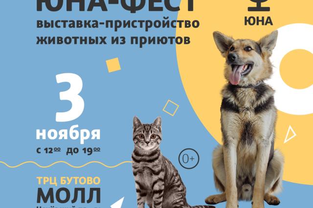 Центр реабилитации временно бездомных животных «Юна» проведет выставку-пристройство животных из приюта