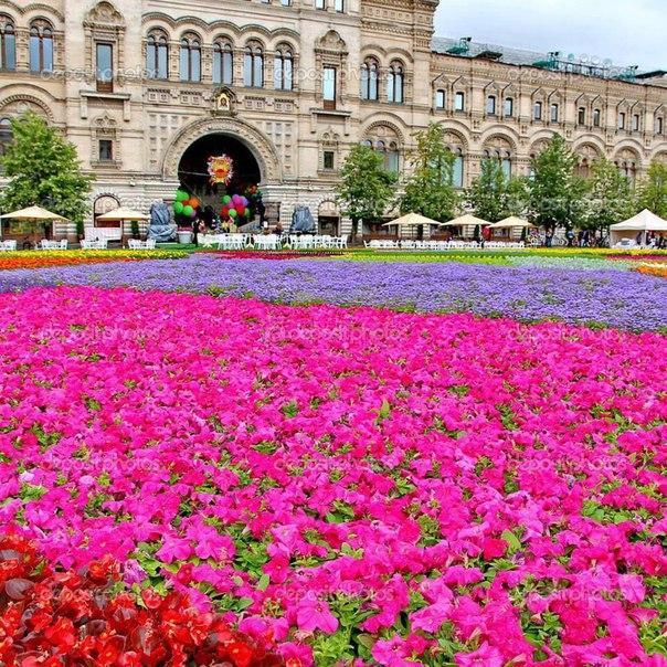 Парад цветов в центре Москвы