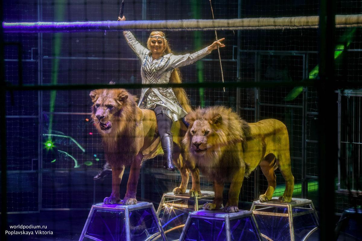 Всемирный фестиваль циркового искусства «Идол» на телеканале «Звезда»