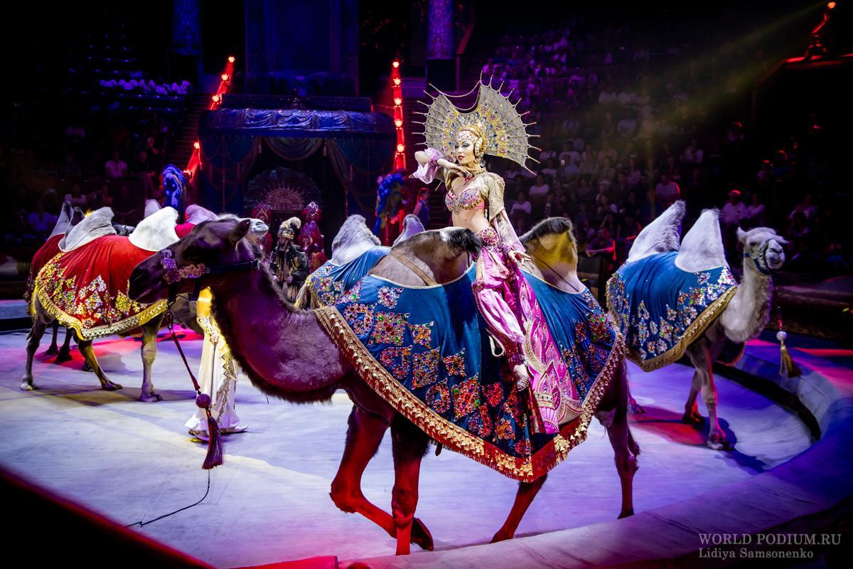 Дивный колорит Востока - «Песчаная сказка» в Большом Московском цирке