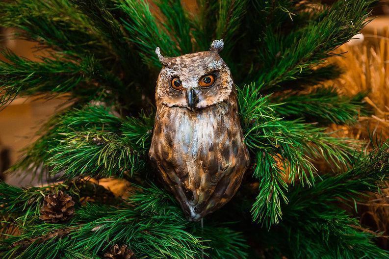 В «Аптекарском огороде» появятся дикие животные