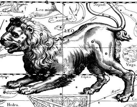Гороскоп для Льва