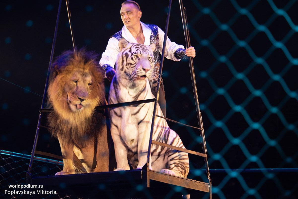 «Большой Московский цирк на проспекте Вернадского» отметил 50-летний юбилей!