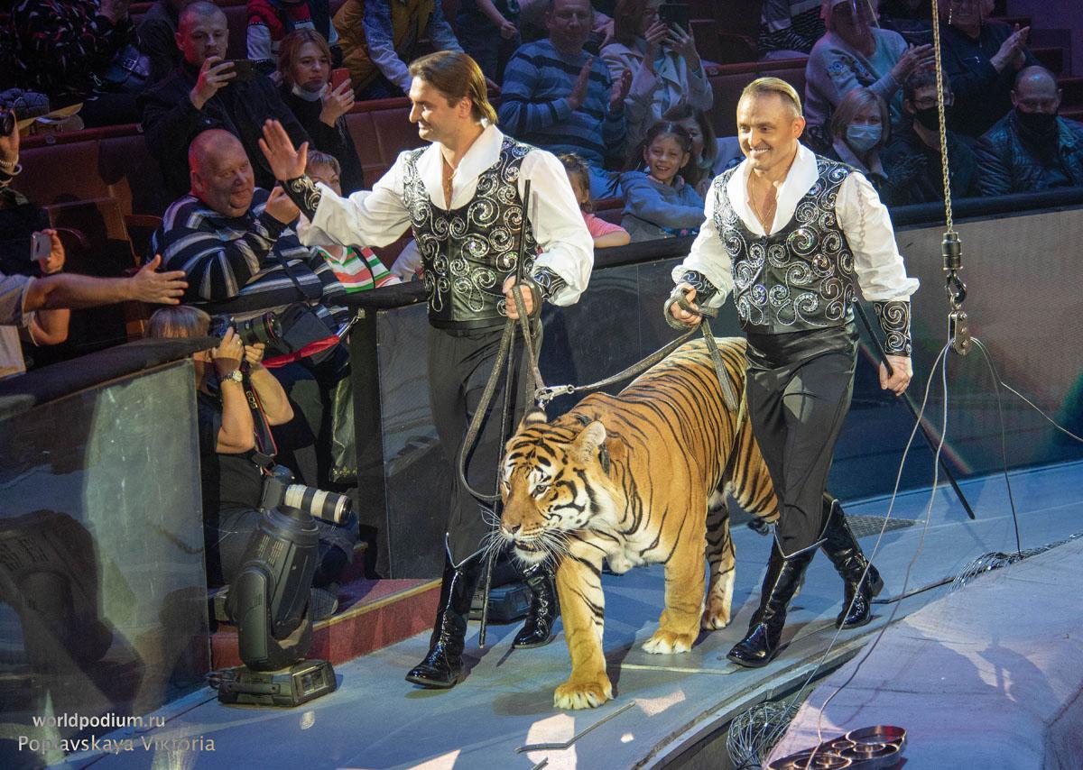 Международный день цирка: «Последнее прибежище чистого искусства!»