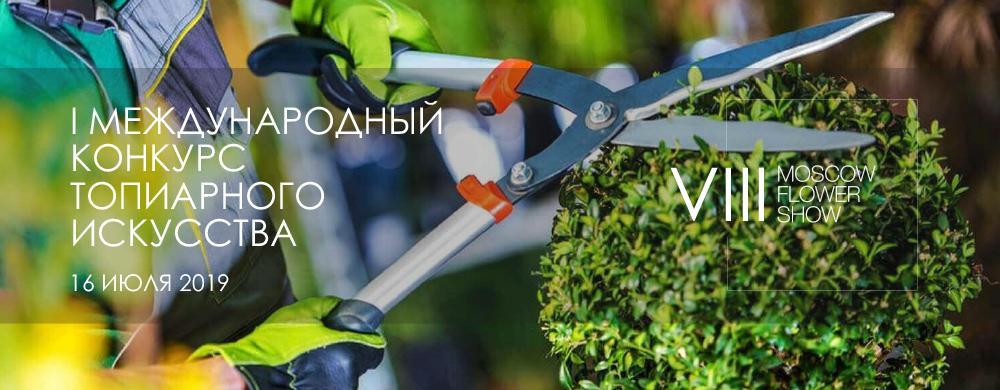 Впервые в России пройдет конкурс по топиарному искусству