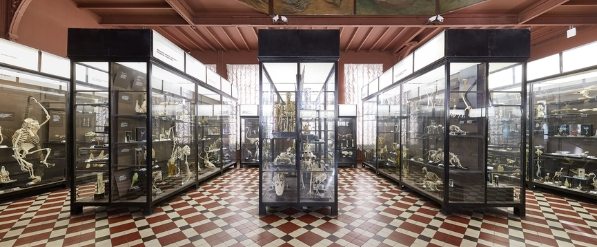 Фотовыставка Genius Loci в «Музеоне»