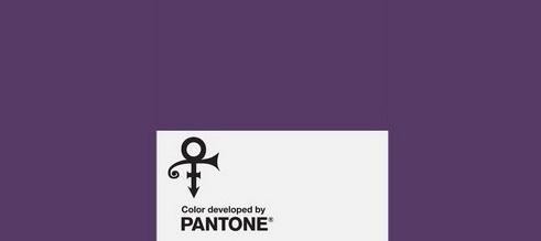 Новый оттенок фиолетового цвета назван в честь Принса