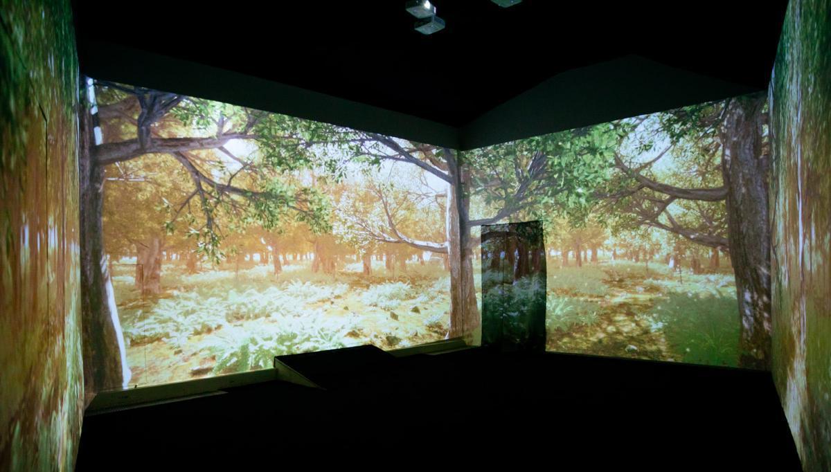 Интерактивное пространство «Галерея «Лес» на ВДНХ