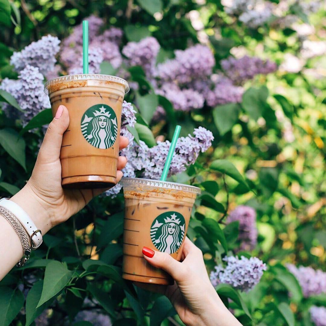Чайное многообразие Starbucks: яркие вкусы и необычные сочетания