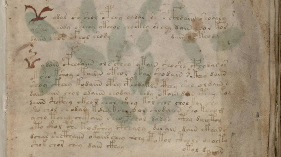 Британский ученый заявил о расшифровке легендарного манускрипта Войнича